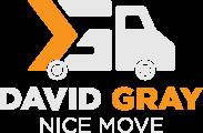 David Gray - Nice Move
